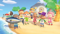 Animal Crossing Direct Coming in...