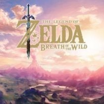Breath of the Wild is Good But...