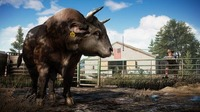 Far Cry 5: Read the Far Cry 5 Update 1.03 Patch Notes