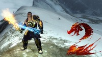 Guild Wars 2: Guild Wars 2 : Warrior Dual Sword Gameplay