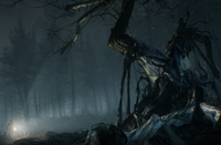 Blair Witch: New Blair Witch Trailer Takes You Through the Creepy Woods in 4K