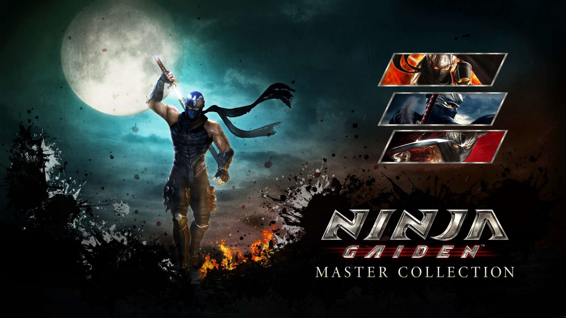 Ninja Gaiden Master Collection details cut feature