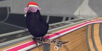 Skatebird review  Neither owlsome...