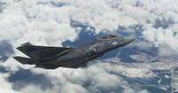 Microsoft Flight Simulator F35...