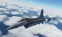 Microsoft Flight Simulator Amami...