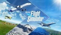 Microsoft Flight Simulator game