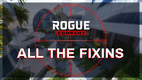 The Rogue Company patch update...