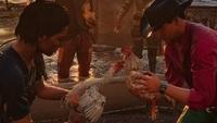 Far Cry 6 Cockfighting Mini Game...
